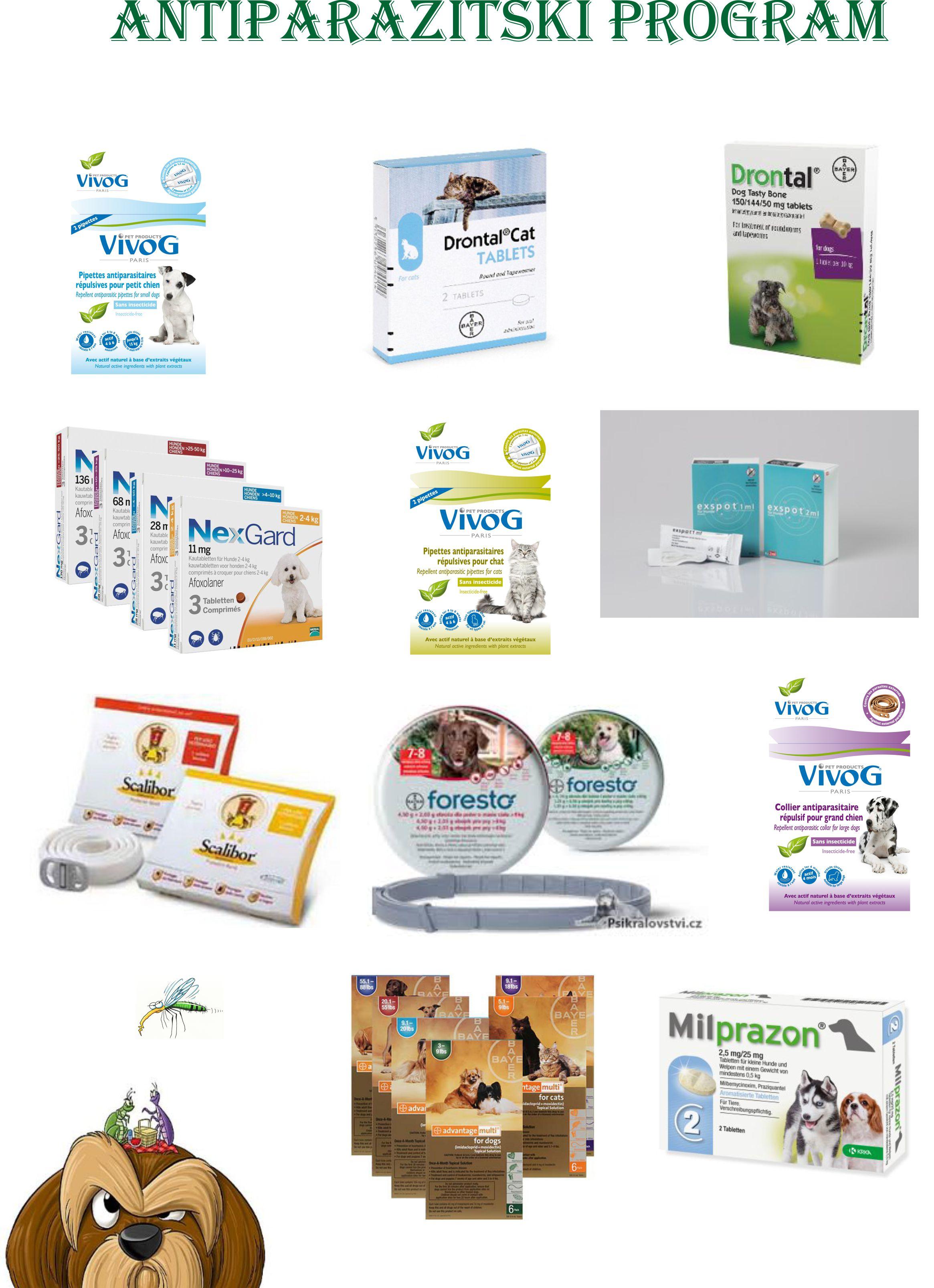 Zoovet-zdravlje-site